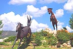 Horse statues rampant